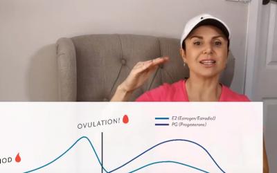 Hormones, menstrual cycle & exercise